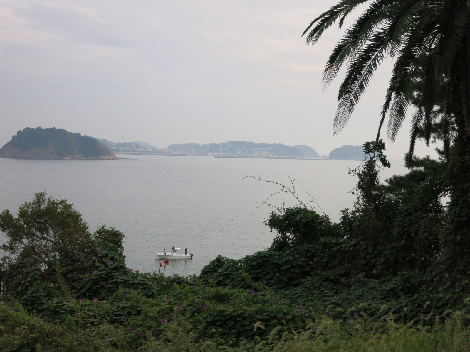 日間賀島3_e0233674_20111428.jpg