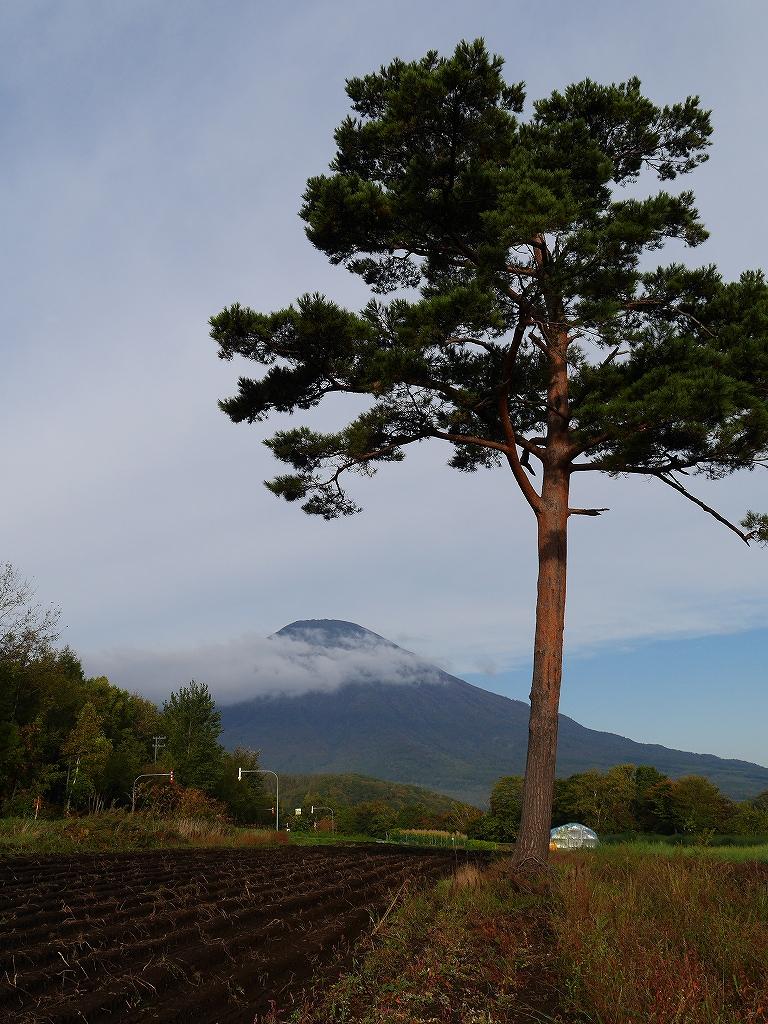 10月5日、羊蹄山を喜茂別コースから_f0138096_127285.jpg