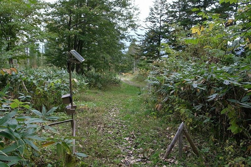 10月5日、羊蹄山を喜茂別コースから_f0138096_1274634.jpg