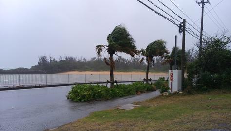 10月7日、本日夕方から台風直撃~_c0070933_17454228.jpg