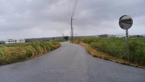 10月7日、本日夕方から台風直撃~_c0070933_17455234.jpg