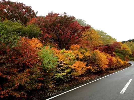 福島 秋本番_c0261447_23293685.jpg