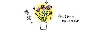f0195352_10343837.jpg