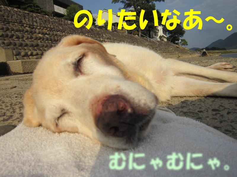 b0194556_0253748.jpg