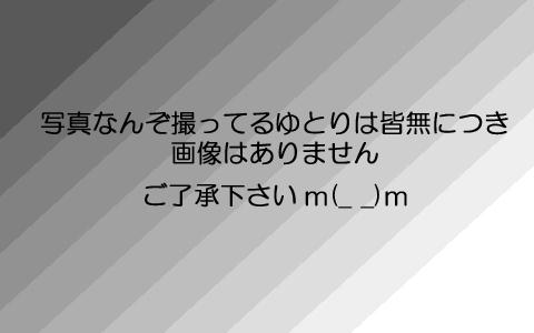 b0175760_1385534.jpg