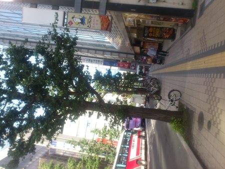 クロスホテル札幌_b0106766_23223916.jpg