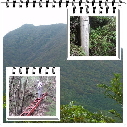c0042869_2012119.jpg