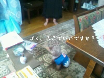 a0113323_010169.jpg