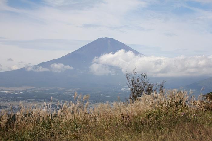 2013.10.8 矢倉岳・サシバ、アマツバメ、クマタカ_c0269342_22491320.jpg