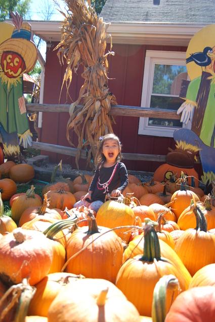 Pumpkin Farm★_f0208254_0595697.jpg