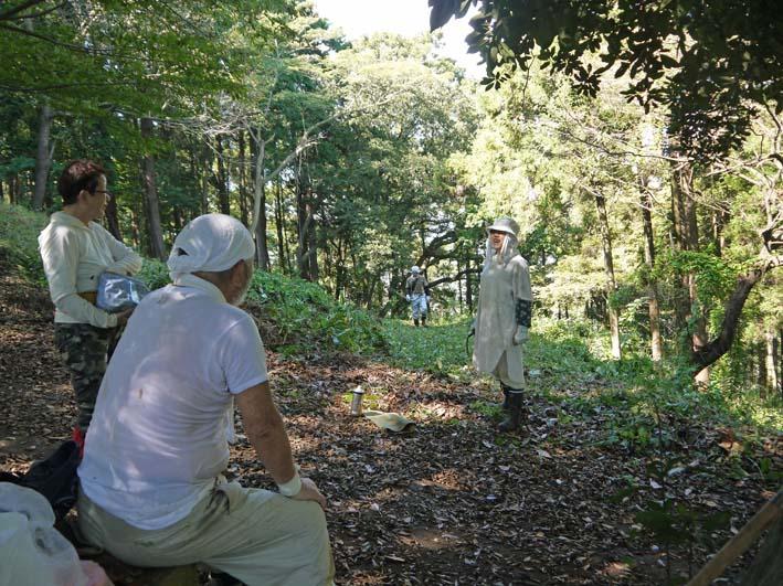 山桜、紅葉の植樹の準備整う:10・8六国見山臨時手入れ_c0014967_21534634.jpg