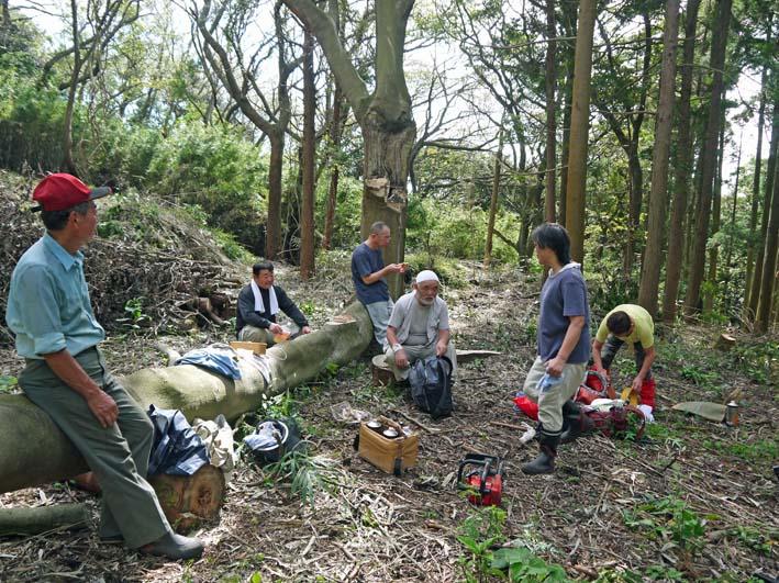 山桜、紅葉の植樹の準備整う:10・8六国見山臨時手入れ_c0014967_215711.jpg