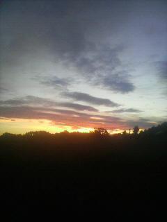 「東雲」_e0063268_54807.jpg