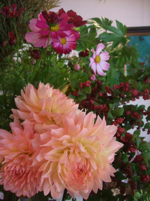 オークリーフ(ダリアの花束)_f0049672_11441741.jpg