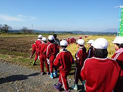 稲刈り体験(緑ヶ丘小・北郷小)_d0247484_2034576.jpg