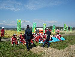 稲刈り体験(緑ヶ丘小・北郷小)_d0247484_2073228.jpg