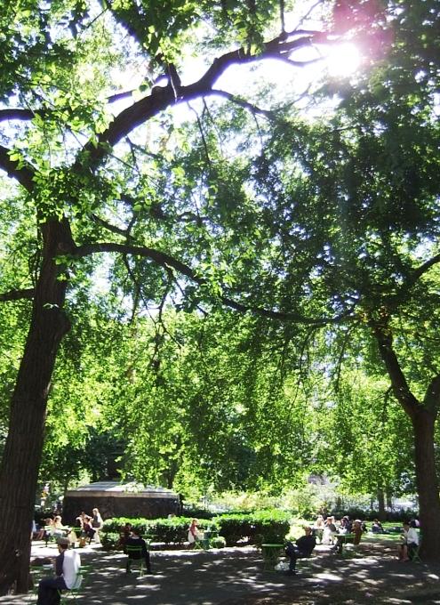 ユニオン・スクエアの芝生の上でゴロゴロ_b0007805_21324117.jpg