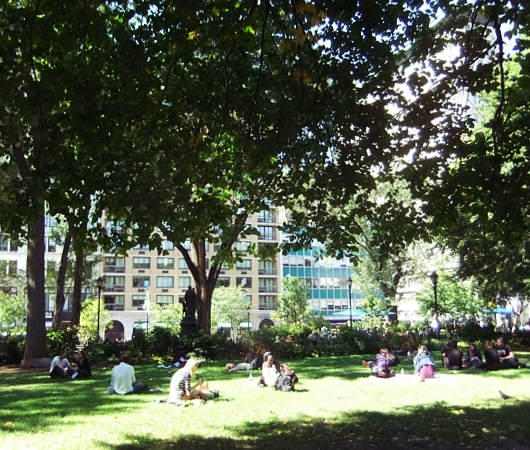 ユニオン・スクエアの芝生の上でゴロゴロ_b0007805_21335271.jpg