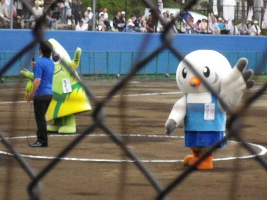 東京国体・成年女子ソフトボール決勝を観戦。_c0017651_7333392.jpg