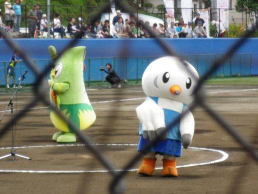 東京国体・成年女子ソフトボール決勝を観戦。_c0017651_7352035.jpg