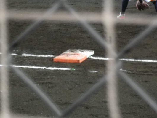 東京国体・成年女子ソフトボール決勝を観戦。_c0017651_7391216.jpg