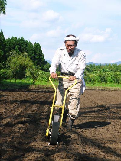 菊池水源里山ニンジン 完全無農薬のニンジン作り_a0254656_17363041.jpg
