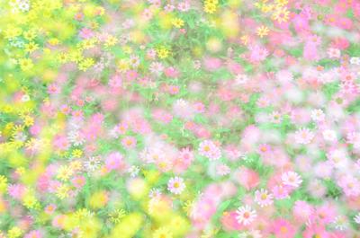 f0144892_19465932.jpg