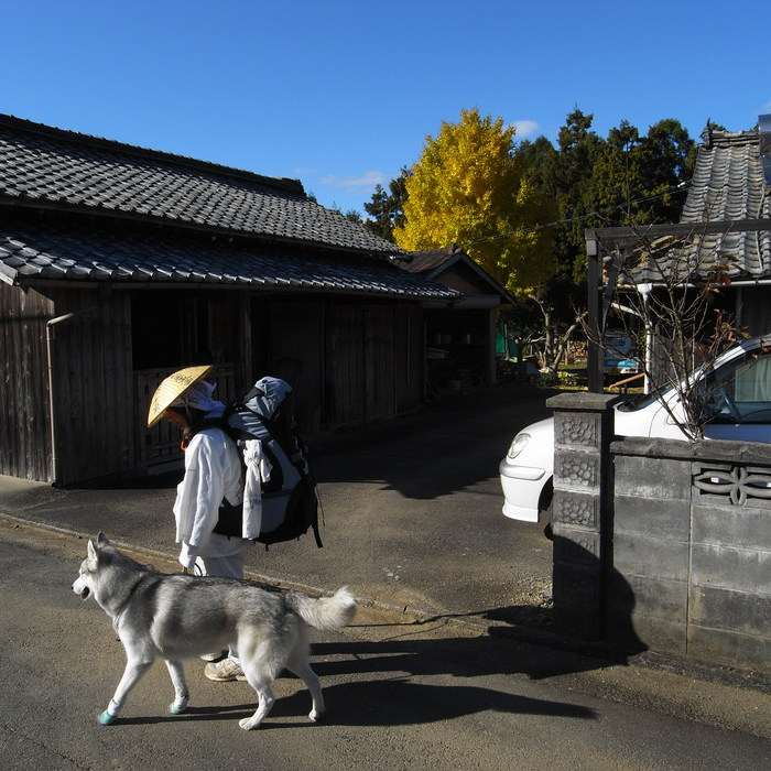 Memory of the second pilgrimage with husky HANA_c0049299_1215076.jpg