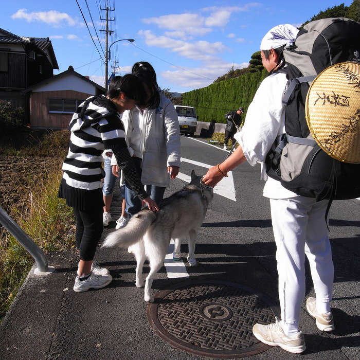 Memory of the second pilgrimage with husky HANA_c0049299_12184930.jpg