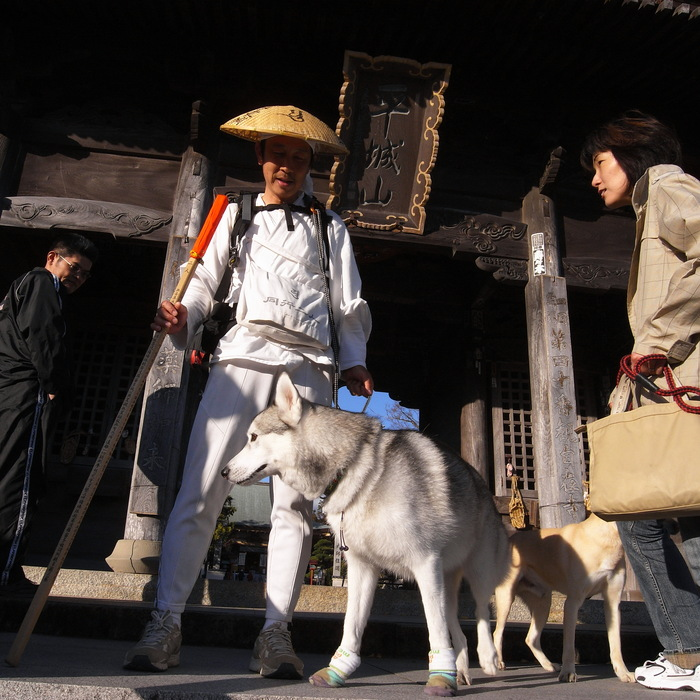 Memory of the second pilgrimage with husky HANA_c0049299_12234426.jpg