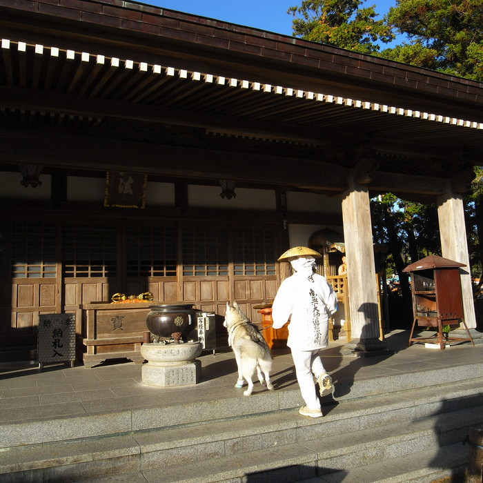 Memory of the second pilgrimage with husky HANA_c0049299_1225343.jpg