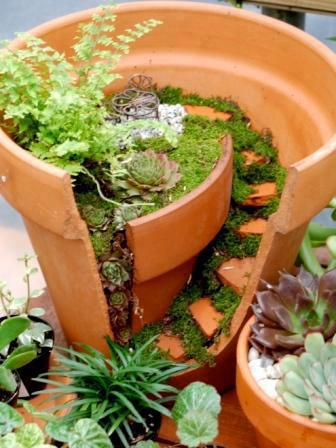 potの中の小さな階段_d0087595_1814568.jpg