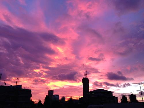 morning sky_f0127696_16504217.jpg