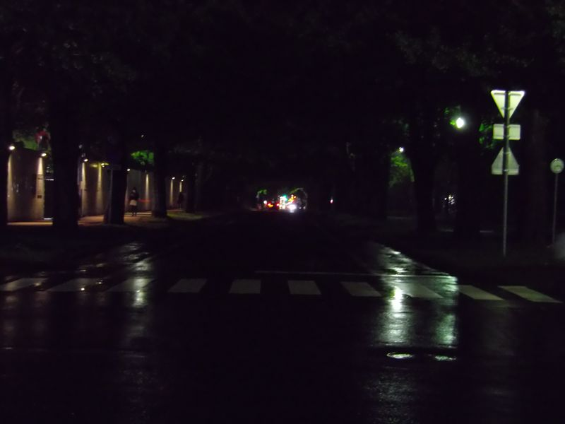 雨の一日_c0025115_231244100.jpg