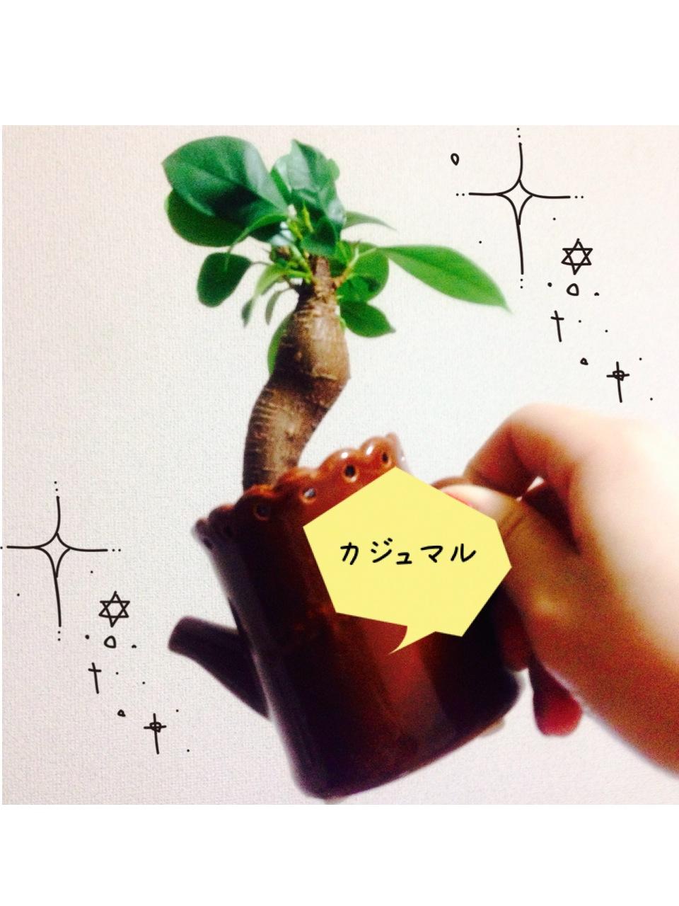 名古屋へ来てから…_a0118722_12474810.jpg
