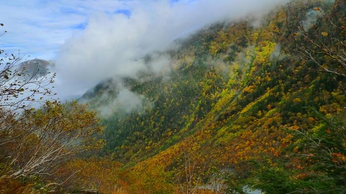 北岳登山〜下り〜_e0155231_1233961.jpg