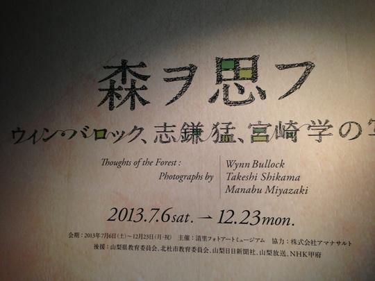 森ヲ思フ  ーウィン・バロック、志鎌猛、宮崎学の写真ー_f0236691_1123426.jpg
