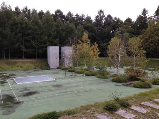 森ヲ思フ  ーウィン・バロック、志鎌猛、宮崎学の写真ー_f0236691_1124635.jpg