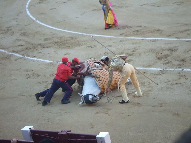 スペイン旅行6日目 Part3_f0076001_134172.jpg