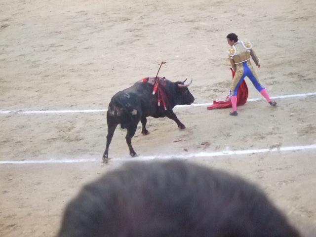 スペイン旅行6日目 Part3_f0076001_153161.jpg
