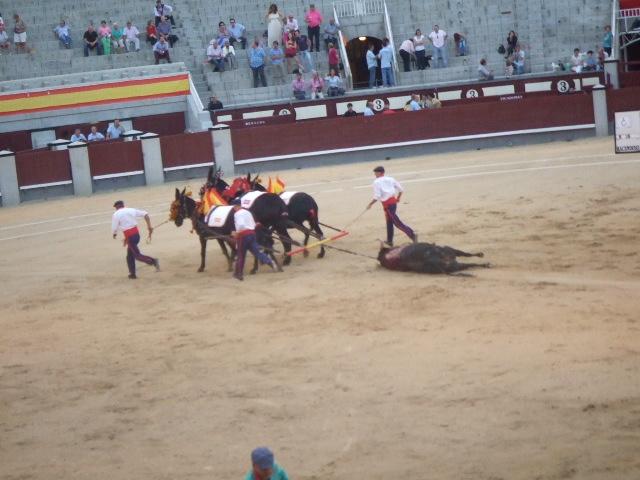 スペイン旅行6日目 Part3_f0076001_154086.jpg