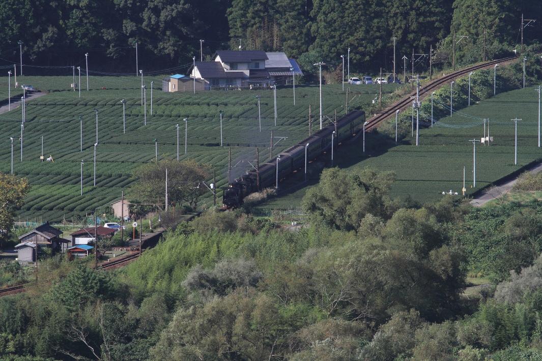 茶畑の中の小さな駅を汽車が通り過ぎる - 2013年秋・大井川重連 -  _b0190710_21573333.jpg