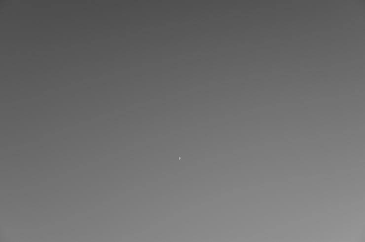 a0254914_17395258.jpg