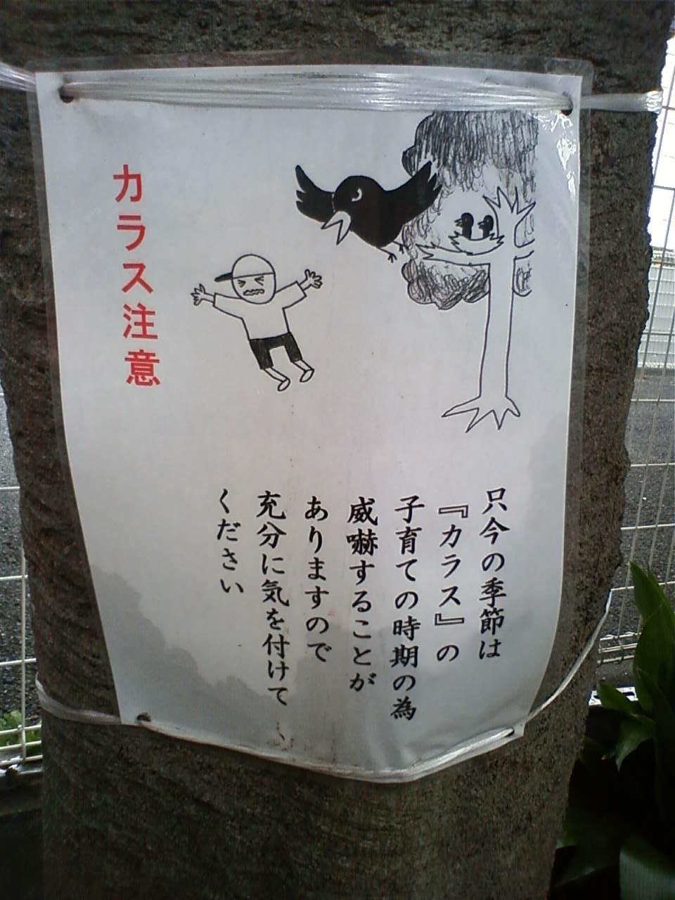 写真 新宿四丁目付近 4_b0136144_6323733.jpg