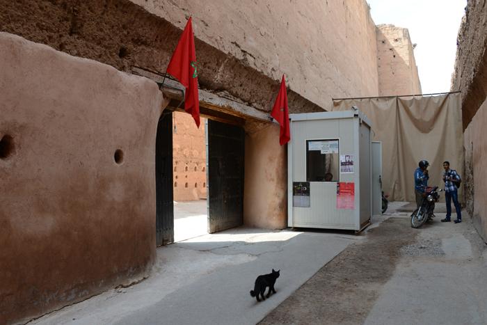 モロッコ猫写真_e0171573_23293129.jpg