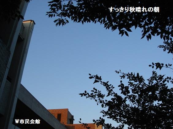 b0226221_10193260.jpg