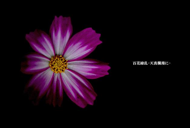 f0235326_9203133.jpg