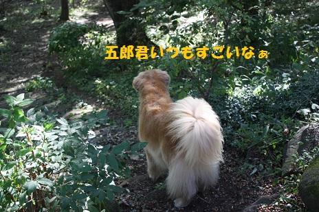 f0114128_1812514.jpg