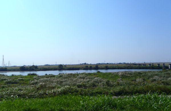 川の流れに(2)_e0086244_1418992.jpg