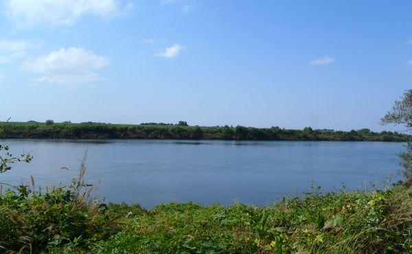 川の流れに(3)_e0086244_14204315.jpg